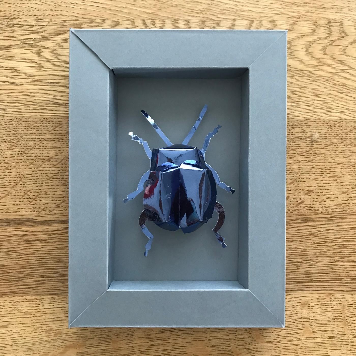 Scarabée d'expositIon - DIY - bricolage enfant - craft for kids - pliage - papier - origami - insecte encadré - cadre - Image à la une