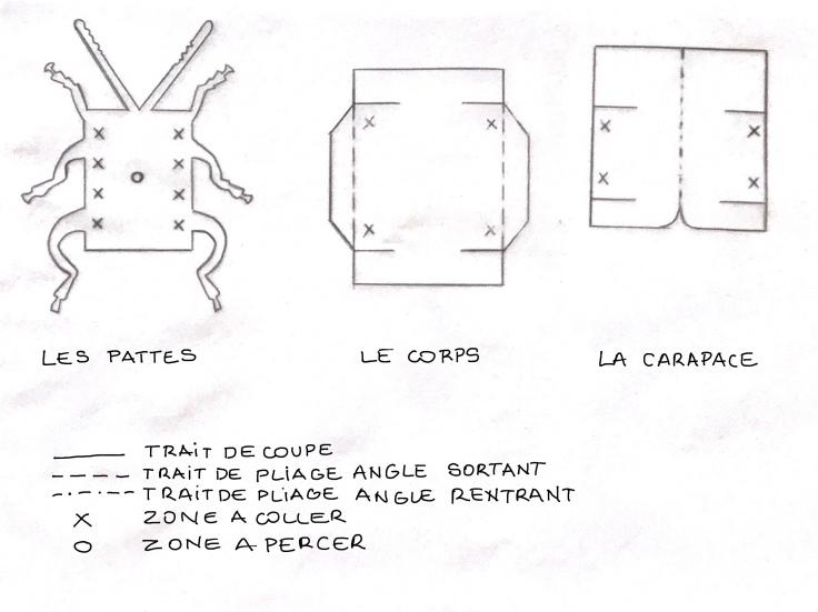 Scarabée d'expositIon - DIY - bricolage enfant - craft for kids - pliage - papier - origami - insecte encadré - cadre - Modèle